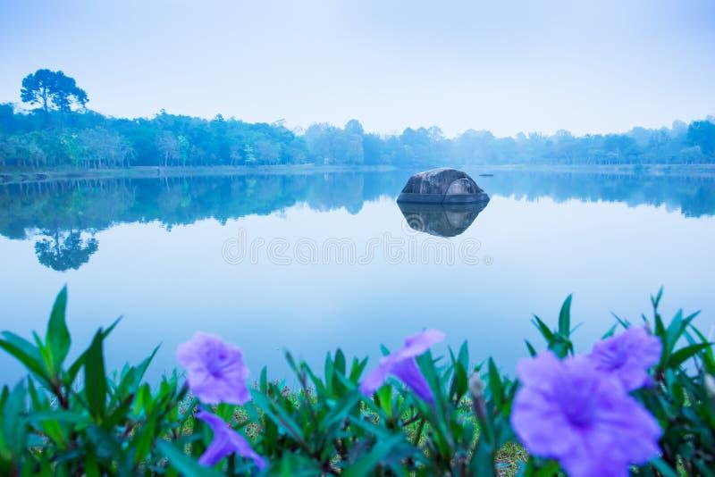 Ochtendlandschap van meer met violette bloemen in blauwe nevelig, nadruk op grote kiezelsteen in kalme zoetwater royalty-vrije stock afbeelding