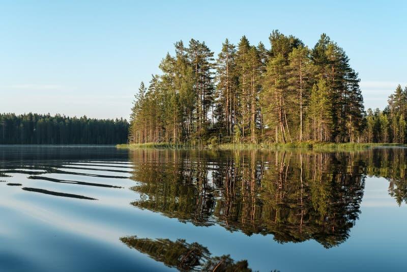 Ochtendlandschap, vlot, kalm meer, eiland met pijnboom en bezinning van bomen in het water, blauwe hemel en boskust bij dageraad stock afbeeldingen