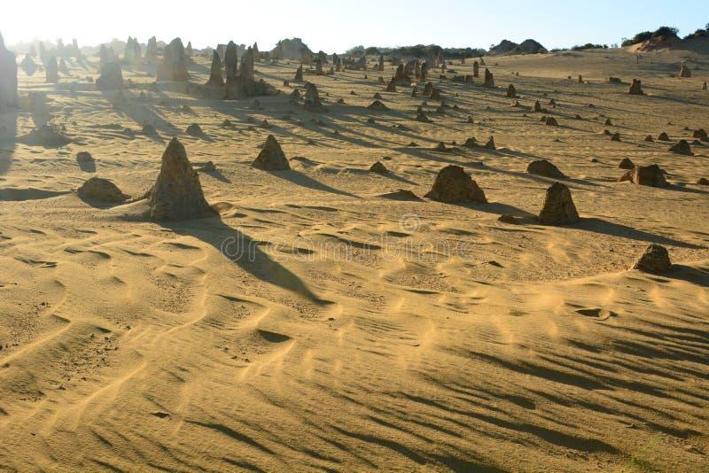 Ochtendlichten bij Toppenwoestijn Nambung Nationaal Park cervantes Westelijk Australië australië royalty-vrije stock fotografie
