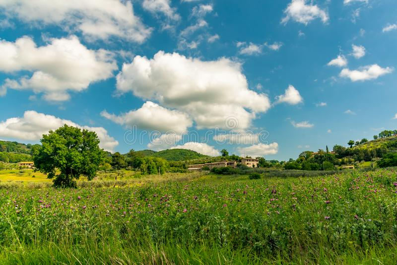 Ochtendmening met de mooie heuvels van Umbrië dichtbij Assisi, Italië royalty-vrije stock afbeeldingen