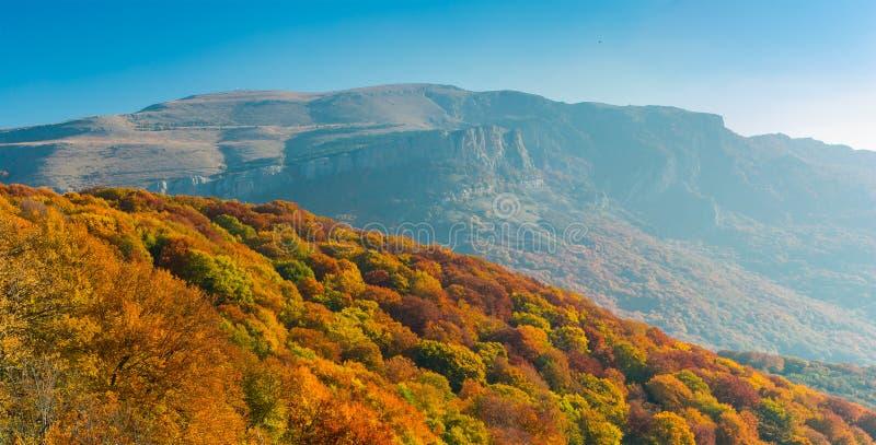 Ochtendmening over Demerdzhi-bergketen stock fotografie