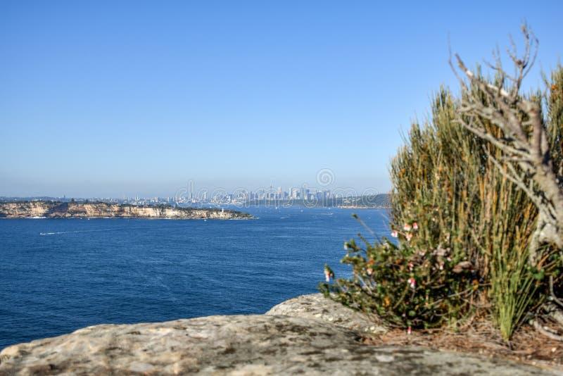 Ochtendmening van de de stadshorizon van Sydney die van het Noordenhoofd wordt gezien, een landtong in Mannelijk royalty-vrije stock foto