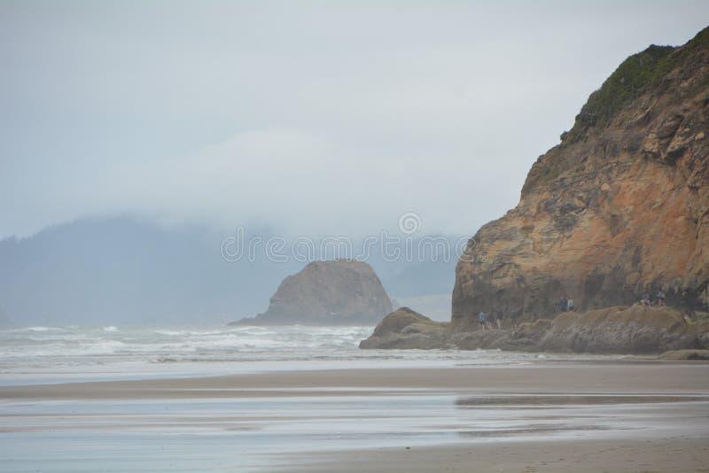 Ochtendmist op Omhelzingspunt, de Kust van Oregon stock foto's