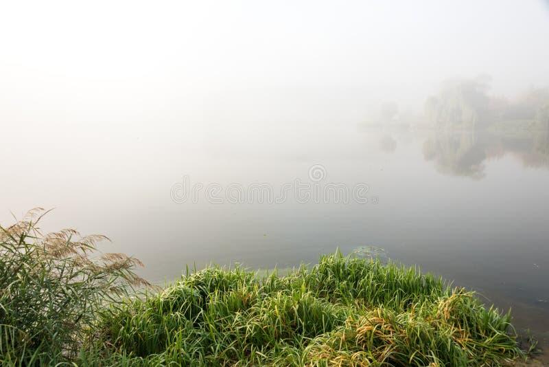 Ochtendmist over het meer met bezinning in het water Mist op een rivier stock afbeeldingen