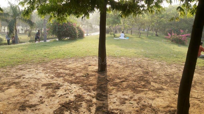 Ochtendtijd in park stock foto