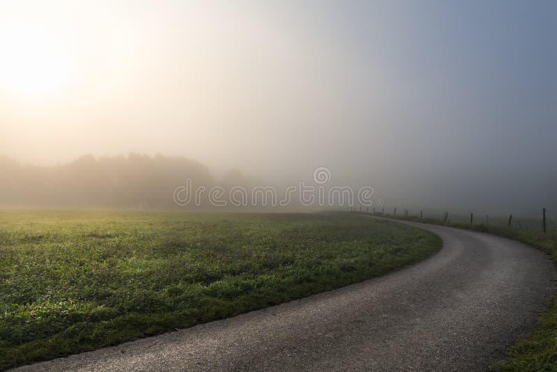 Ochtendzon door mist en een landweg royalty-vrije stock fotografie