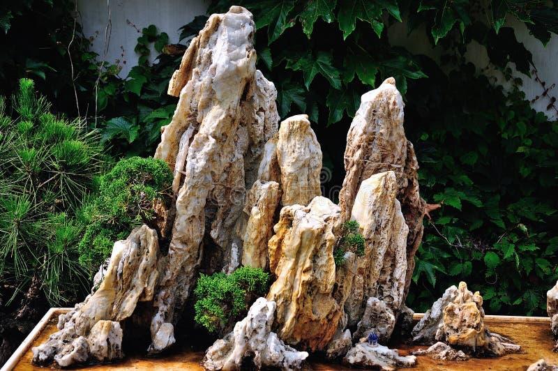 Ociągający się Ogrodowi bonsai fotografia royalty free