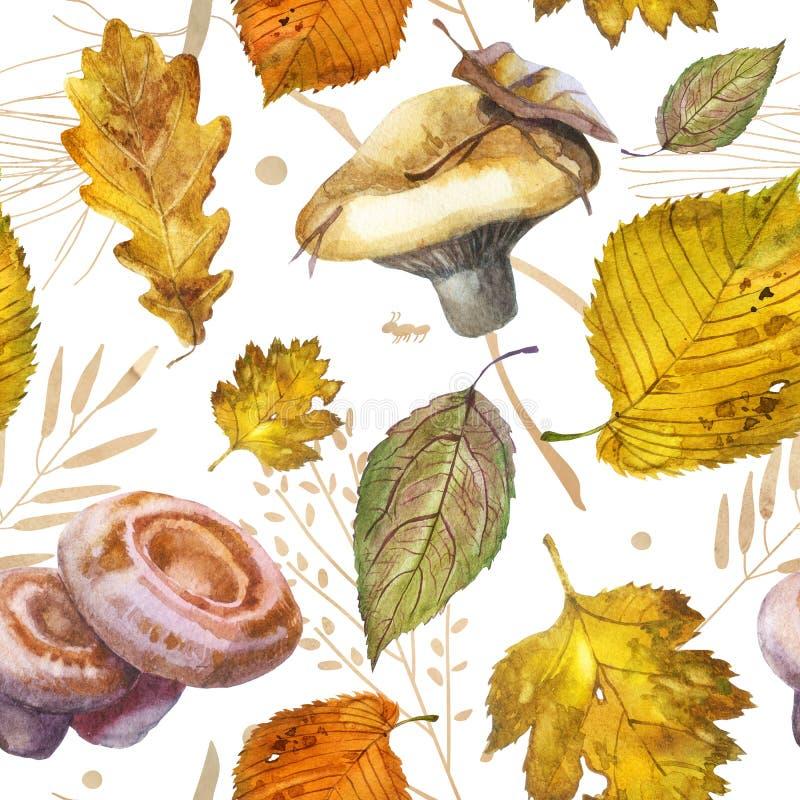 ocks? vektor f?r coreldrawillustration Kantarellchampinjon plocka svamp orangen royaltyfri illustrationer