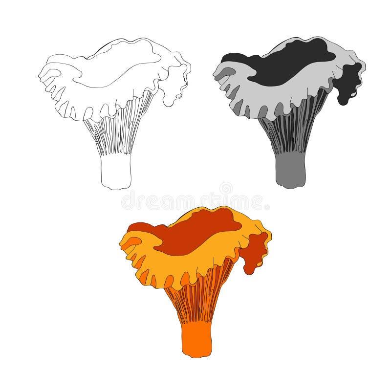 ocks? vektor f?r coreldrawillustration Kantarellchampinjon plocka svamp orangen vektor illustrationer