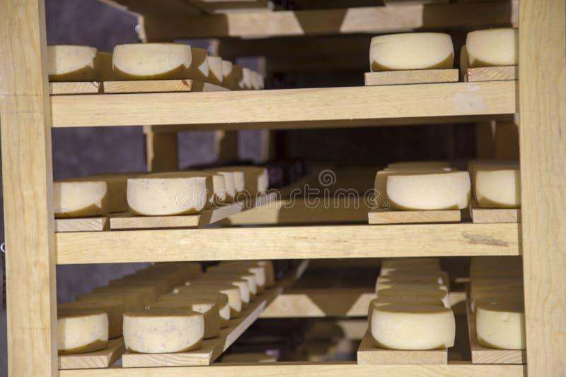 Oco de queijos amadurecidos em Tequisquiapan, Queretaro, México fotos de stock