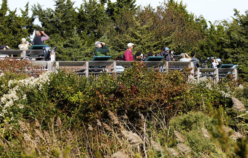 Oct 10 2015: Cape May NJ hawk watch platform royalty free stock image