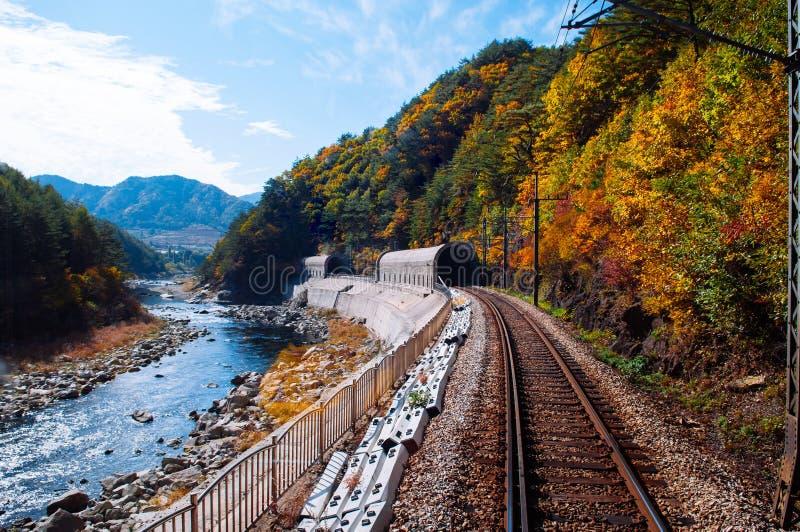 Train tracks and tunnels along stream and autumn forest Baekdudaegan Mountain Range Canyon, South Korea. OCT 24, 2013 Gangwon-do, South Korea - Train tracks and stock photo