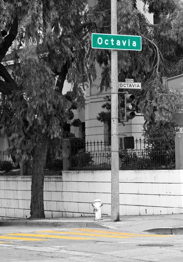 Octavia Street Sign arkivfoto