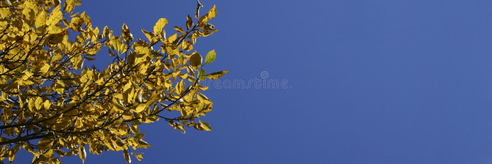 October 1 royalty free stock image