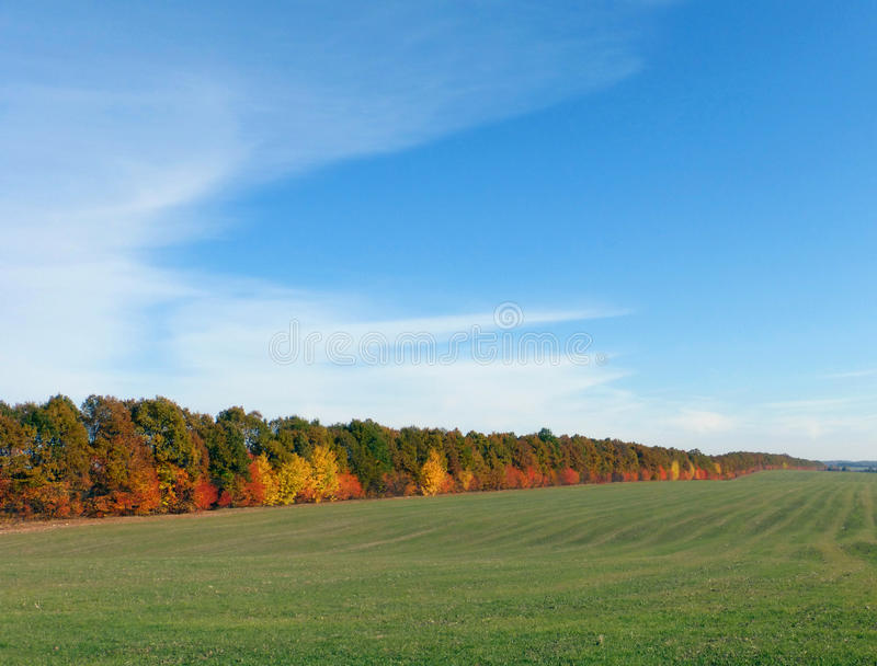 October. Amazing colors of autumn on a clear sunny day stock photo