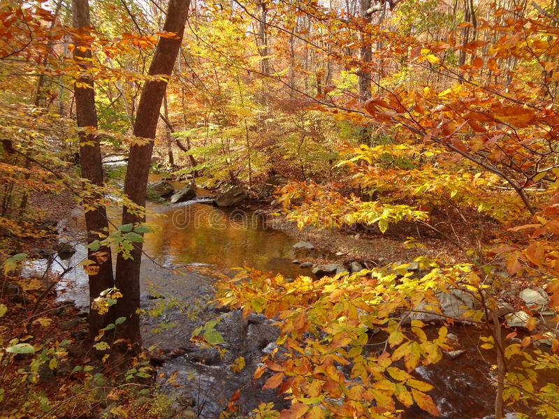 Download October In Northern Maryland Stock Image - Image: 21766113