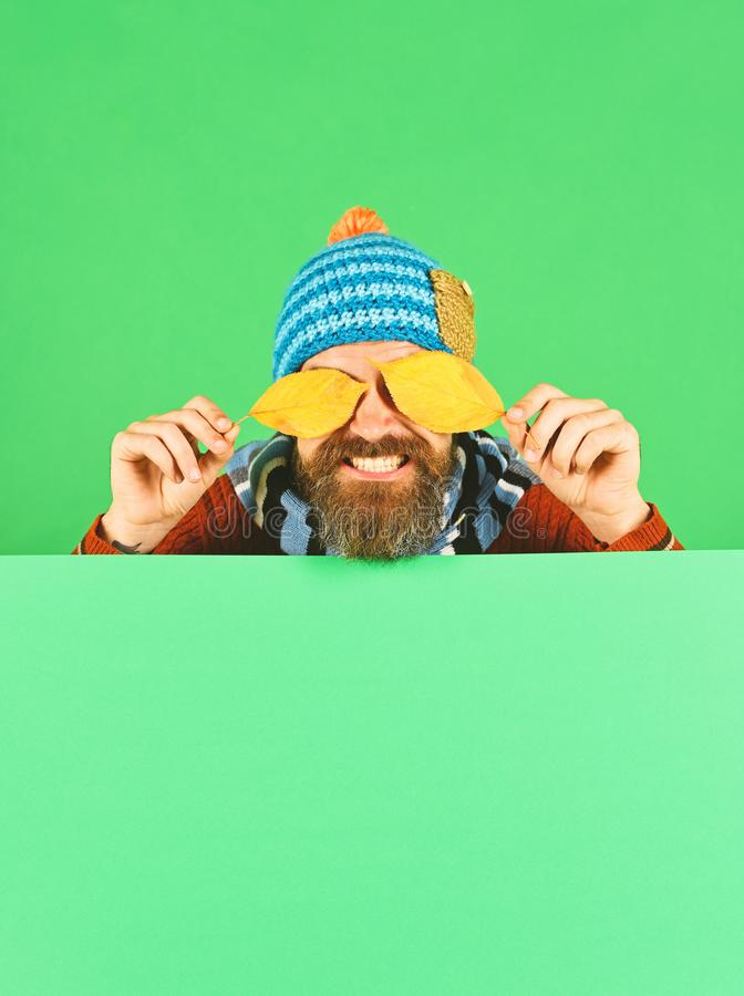 October and November time idea. Autumn and cold weather concept. Man in warm hat closes eyes with cherry tree leaves on green background, copy space. Hipster royalty free stock images