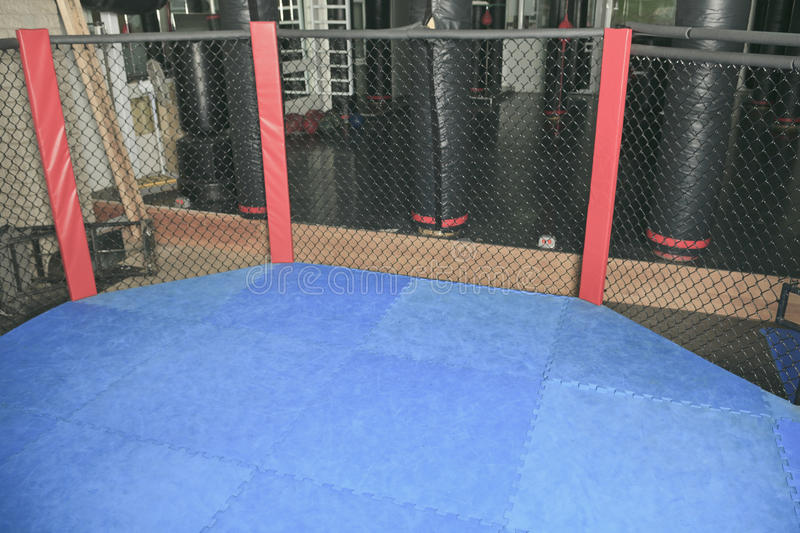 Octogonal ring. An octogonal ring the place where UFC fight royalty free stock photo