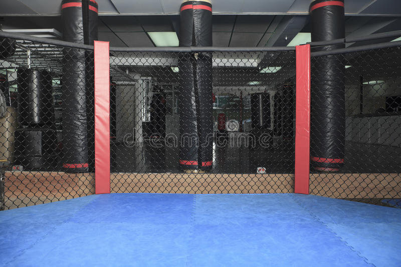 Octogonal ring. An octogonal ring the place where UFC fight stock image