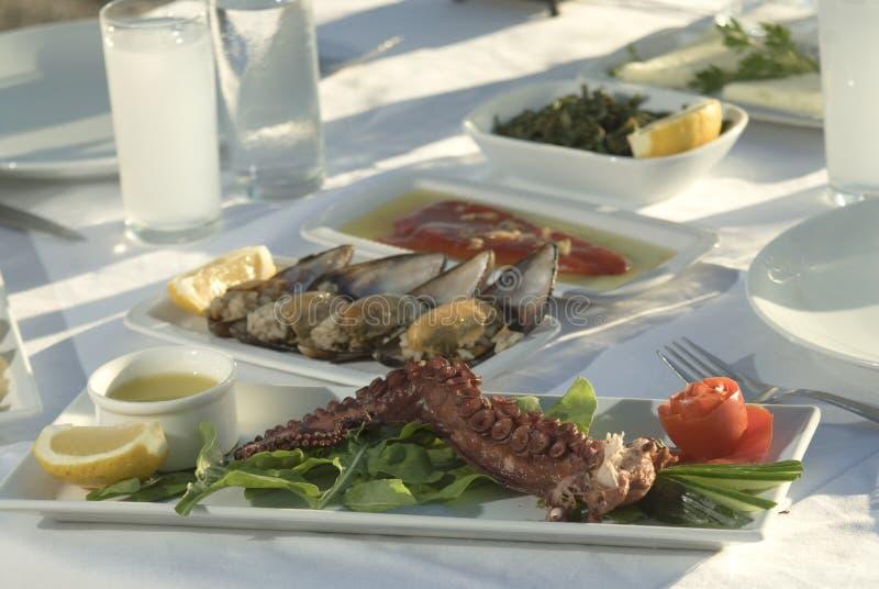 Octopus royalty-vrije stock afbeeldingen