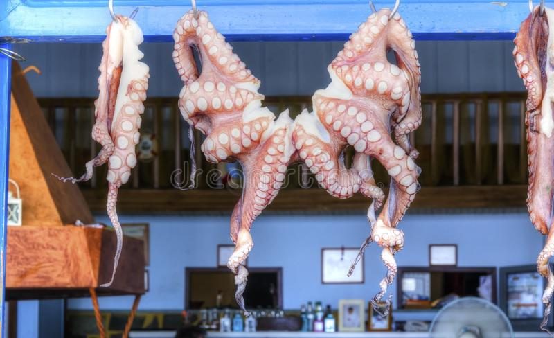 Octopus drying in Greece stock photos