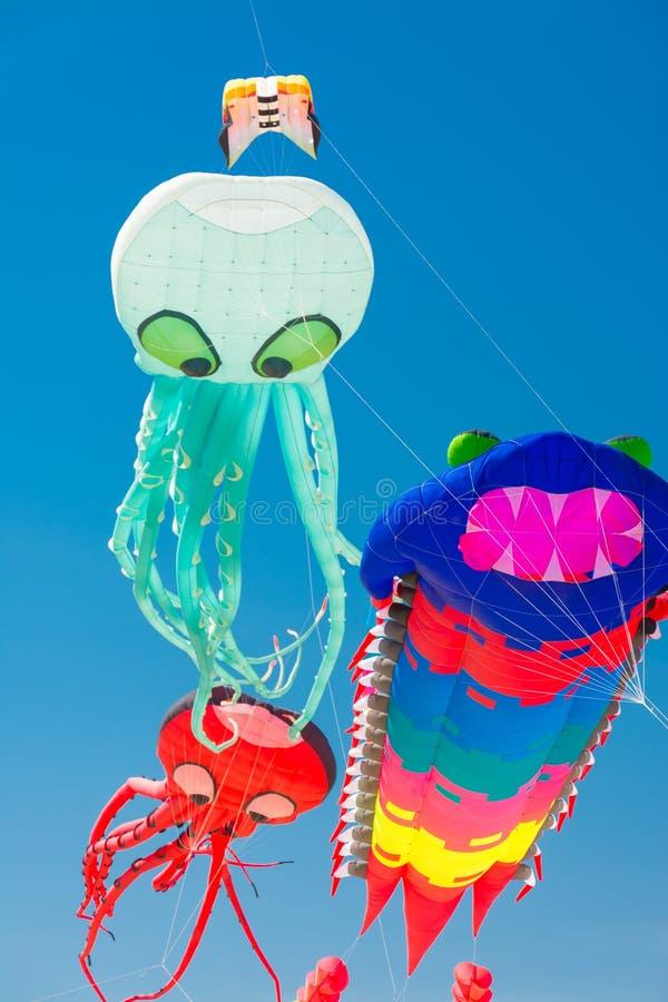Octopus en draak kleurrijke vliegers royalty-vrije stock afbeeldingen