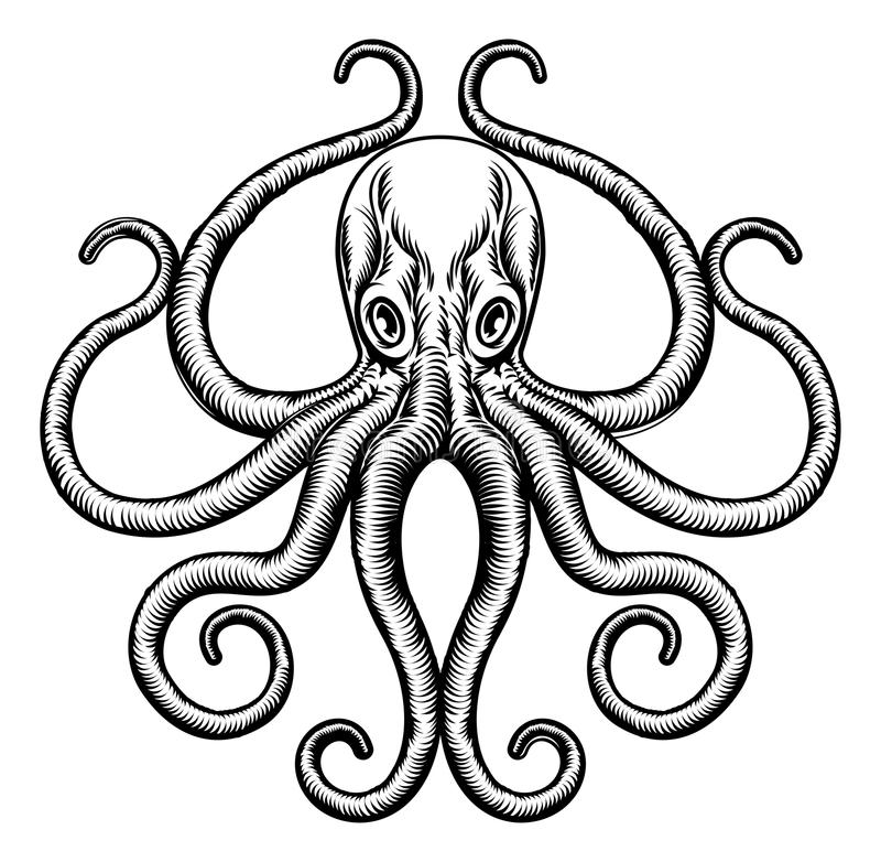 Octopus of Pijlinktvisillustratie stock illustratie