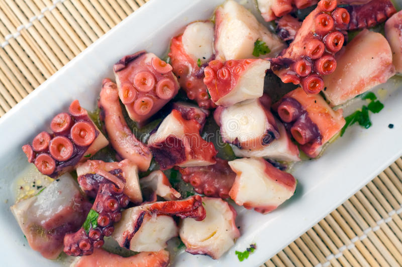 Download Octopus Salad stock photo. Image of octopus, decoration - 12361524