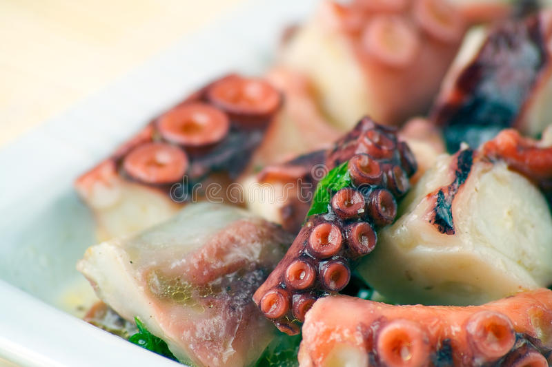Download Octopus Salad stock image. Image of dish, sushi, plate - 12361545