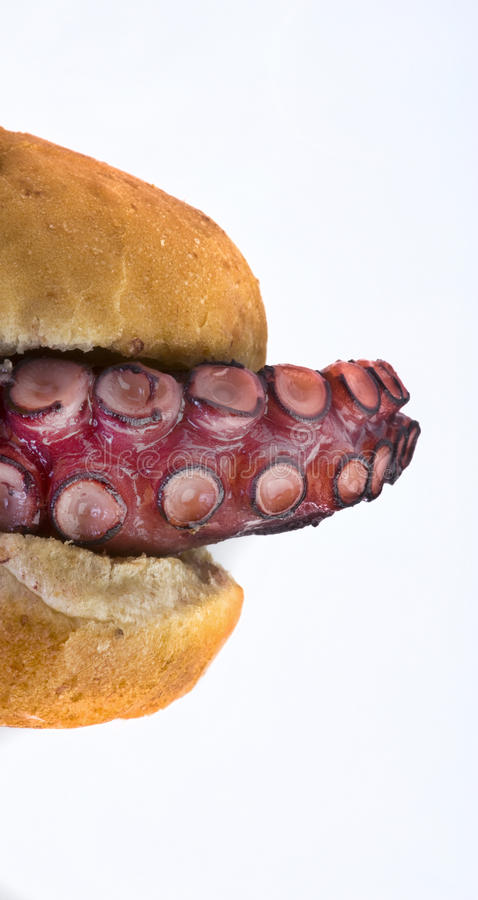 Octopus Sandwich. Stock Photography