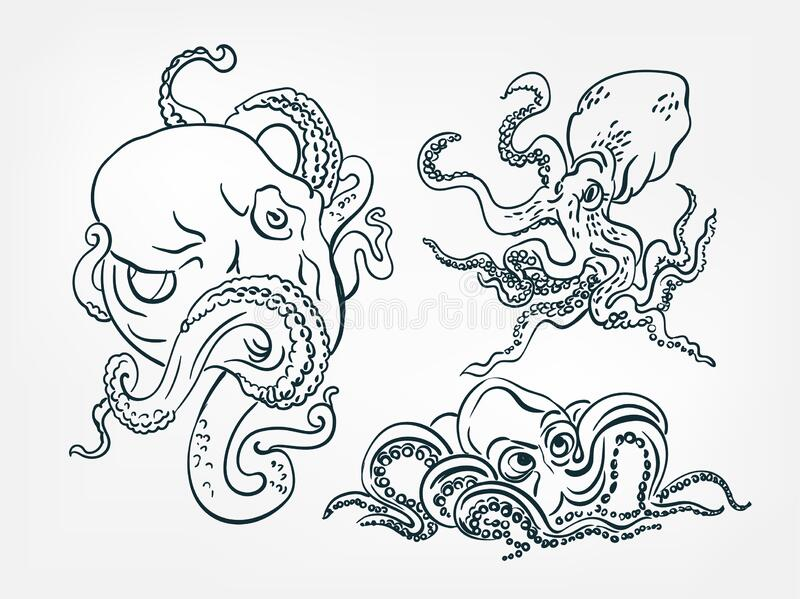 Japanese Octopus Drawing