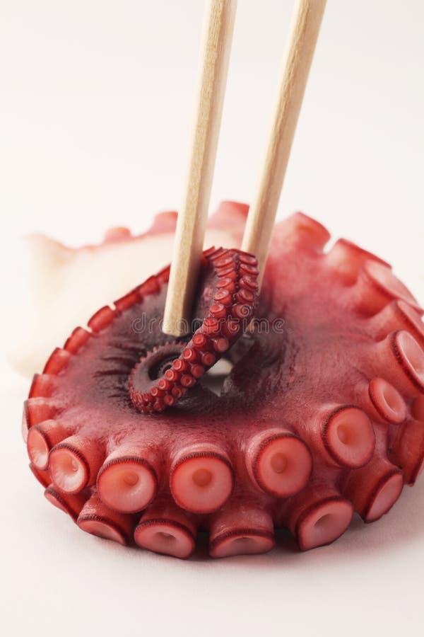 Octopus sushi chopsticks. Exotic octopus tentacle sushi with chopsticks stock photo