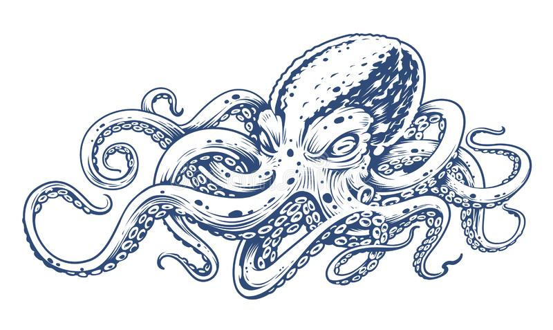 Octopus Vintage Vector Art. Isolated on white. Engraving style vector illustration of octopus stock illustration
