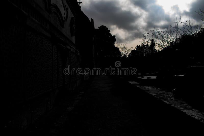Ocultación en las sombras fotografía de archivo libre de regalías
