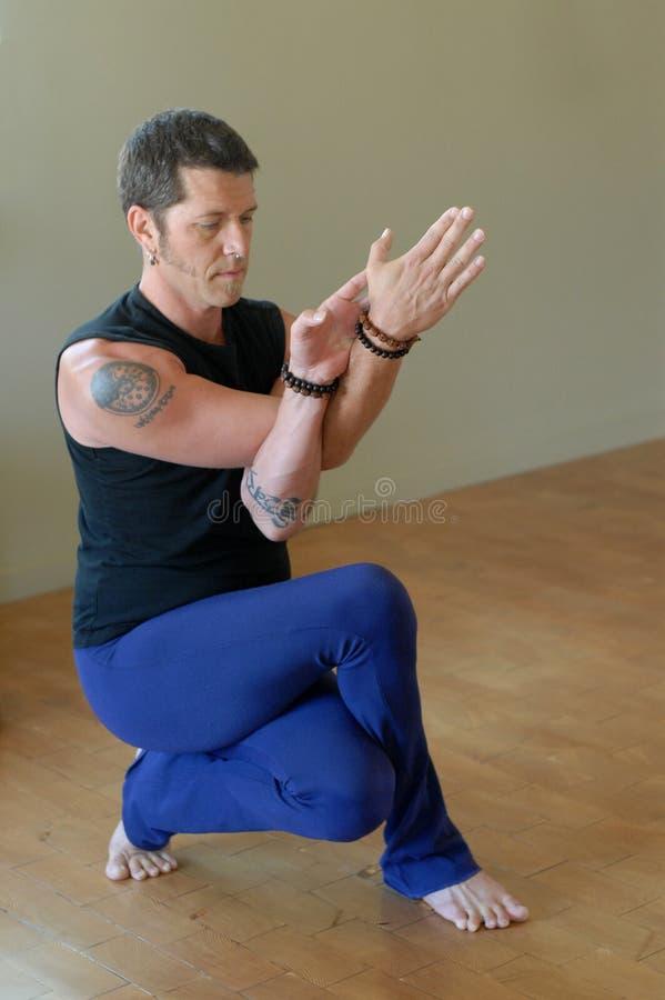 Ocupa intensa da ioga fotos de stock royalty free