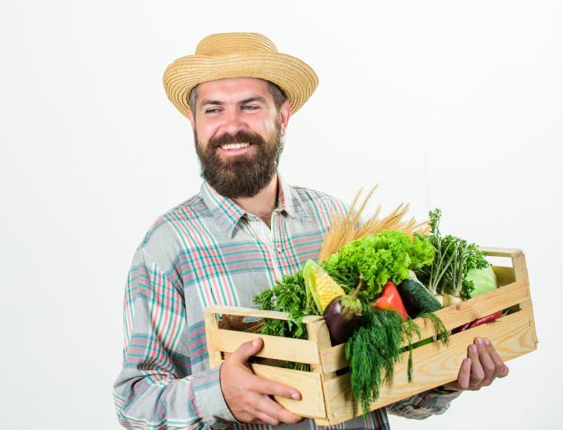 Ocupa??o profissional do estilo de vida do fazendeiro Alimentos locais da compra Da posse farpada r?stica do homem do fazendeiro  fotos de stock royalty free