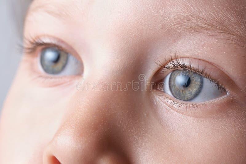 Oczy obraz stock