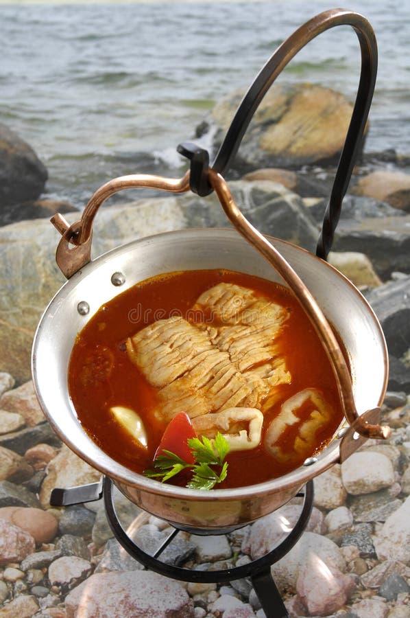 Od Węgry rybia gęsta zupa rybna (jeziorny Balaton) zdjęcie stock