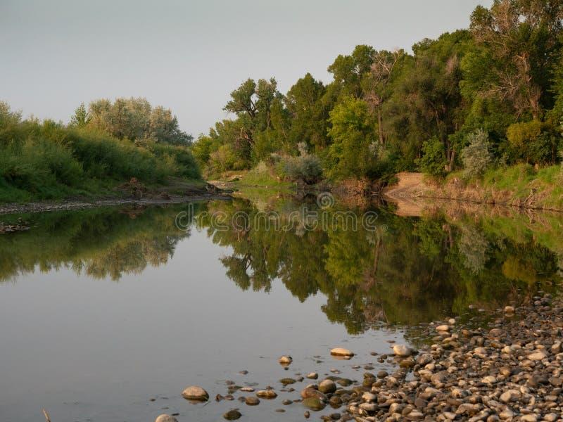 Odbicia drzewa i krzaki na spokój wodzie w Złotym świetle obraz stock
