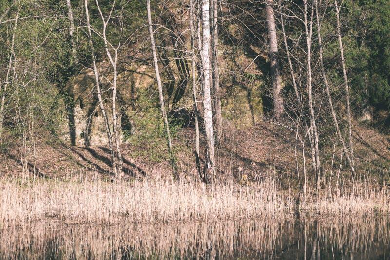 odbicia drzewa w halnej rzece w lecie - rocznik retro obraz stock