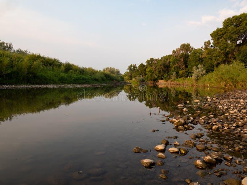 Odbicia drzewa w spokój wodzie przy wschodem słońca zdjęcie stock