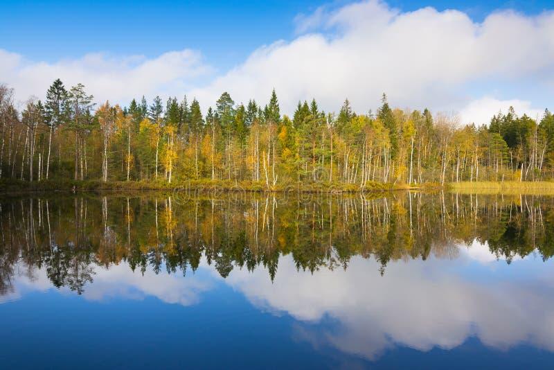 Odbicia Szwedzki jezioro fotografia stock