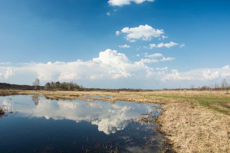 Odbicie biel chmurnieje w wodzie na łące niebieskim niebie i - ładny wiosna dzień zdjęcia stock
