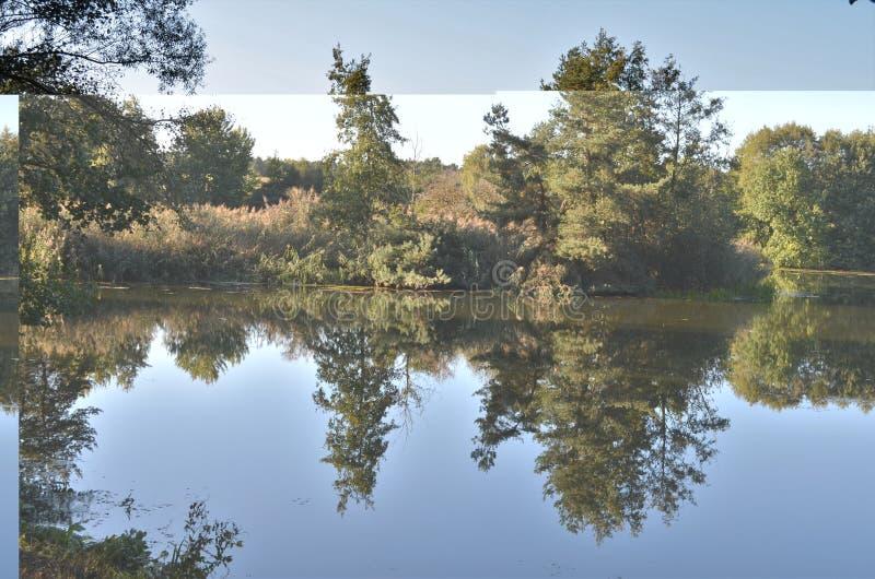 Odbicie drzewa w jasnej spokój wodzie w sezonie jesień fotografia stock