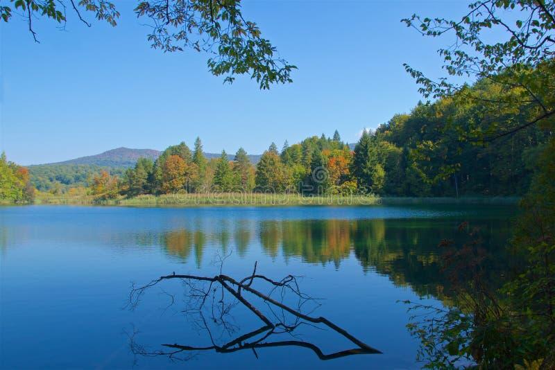 Odbicie jesieni ulistnienie na jeziorze w Plitvice jeziorach parki narodowi, Chorwacja obrazy stock