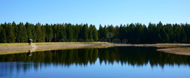 Odbicie lasowi drzewa w jeziorze Historyczny górniczy staw blisko Clausthal-Zellerfeld w Niskim Saxony, Harz góry, Niemcy fotografia royalty free