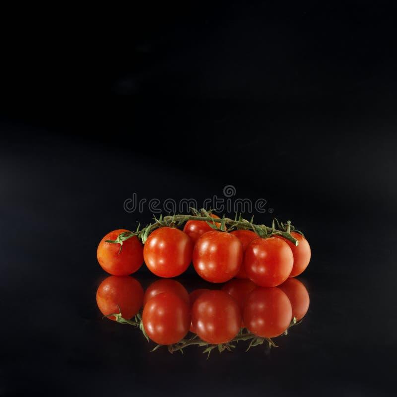 odbicie pomidorów fotografia royalty free