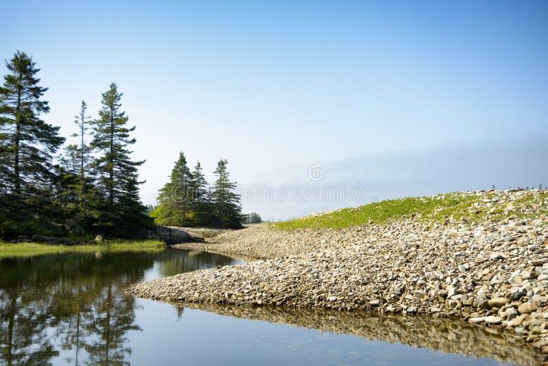 Odbijający Skalisty wpust - Acadia park narodowy obrazy royalty free