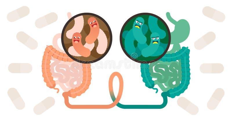 Odchodowy microbiota przeszczep FMT lub stolec przeszczepu procedury pojęcie ilustracja wektor