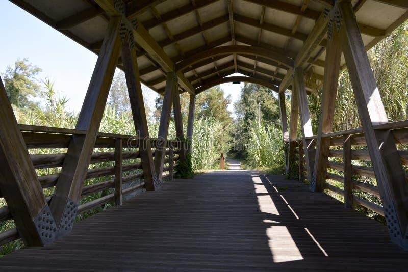 Odcinek drewnianego mostu krytego obraz stock